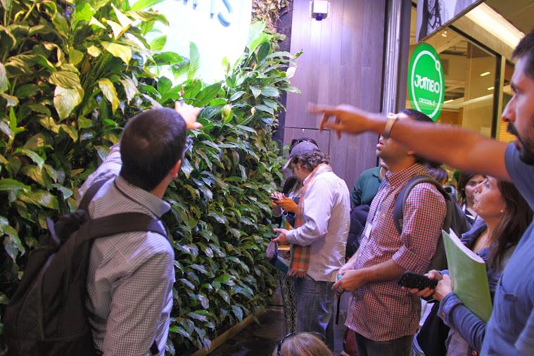 Explicando el funcionamiento de los jardines verticales