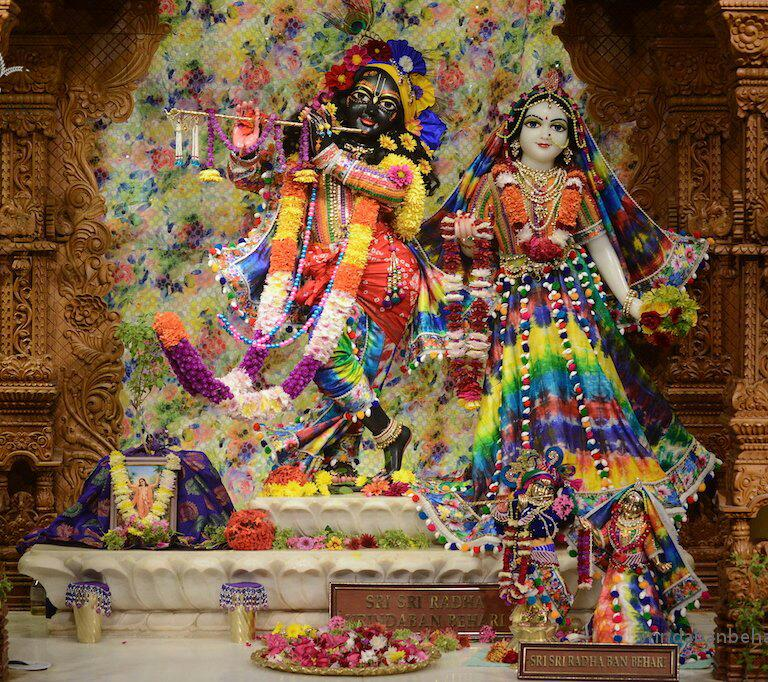 ISKCON GEV (Wada) Deity Darshan 21 Jan 2016 (7)
