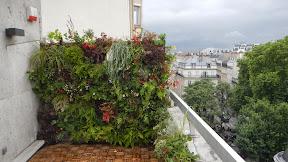 Paris 8ème rue Faubourg Saint-Honoré juin 2013