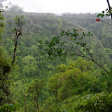 06-23-13 Big Island Waterfalls, Travel to Kauai - IMGP8851.JPG