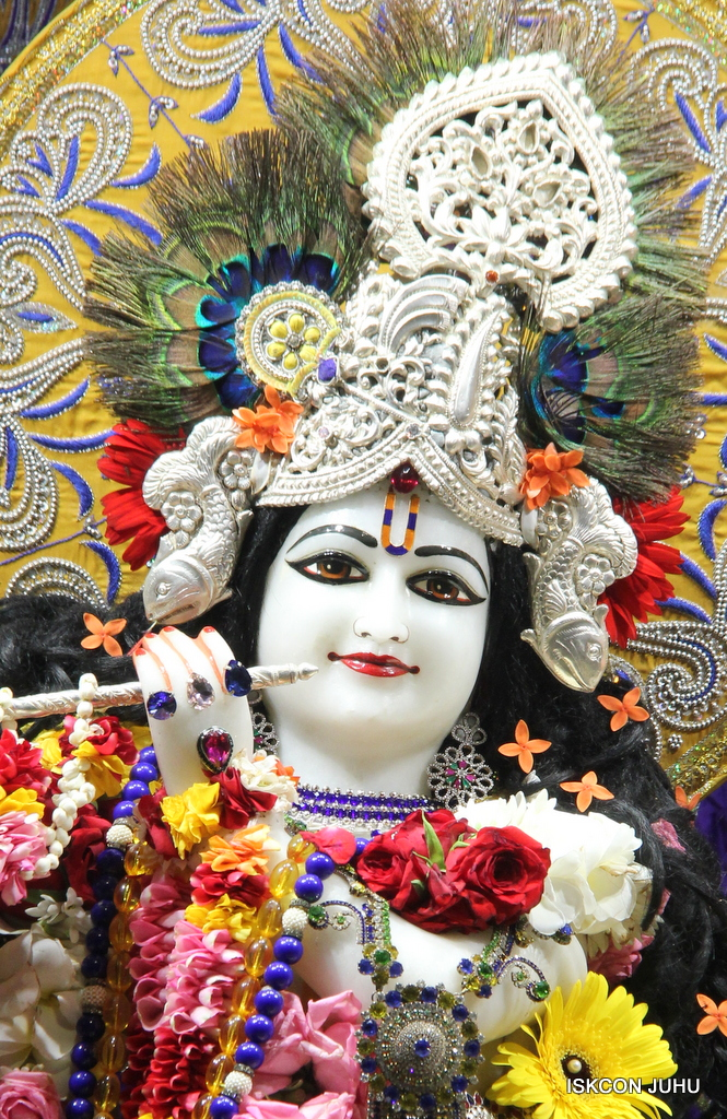 ISKCON Juhu Sringar Deity Darshan on 7th Sep 2016 (66)