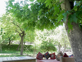 Garden of Altit fort, Hunza