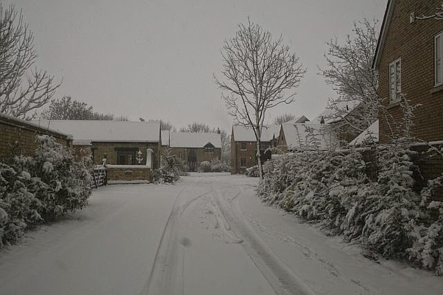 Woodhurst In the Snow - February 2009 - picture23.jpg