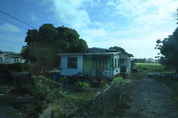 House with veggie plot