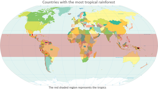 Rainforest webquest this is a world map of rainforests sciox Gallery