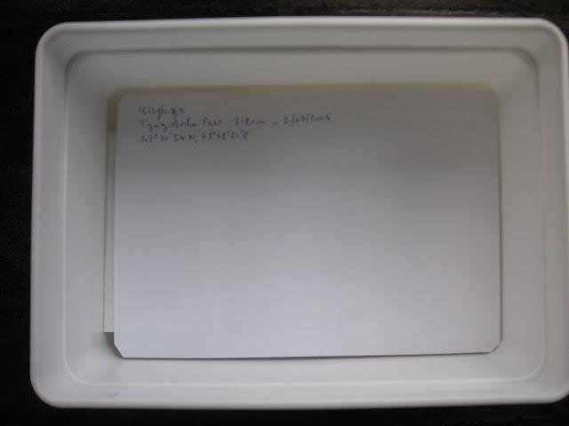 7. Sur les pochettes d'une chasse bien rangées, on place une feuille de papier intercalaire, ajustée aux dimensions internes de la boîte de stockage, présentant les données de la collecte (lieu, altitude, date, etc.).