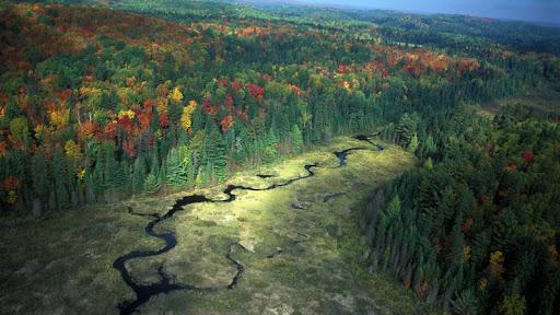 Algonquin Provincial Park. Ontario.jpg