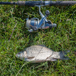 20140705_Fishing_Prylbychi_009.jpg