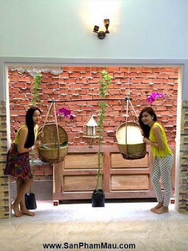 Nhà nhiều đồ gỗ lạ của Tam Triều Dâng - Xưởng đồ gỗ nội thất-2