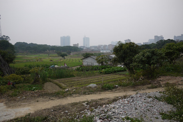 countryside farms with tall urban buildings in the background