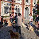 7. Juni 2016: On Tour in Neustadt a.d. Waldnaab - DSC_0477.JPG