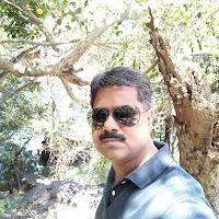 Profile picture of Narendra Shekhawat