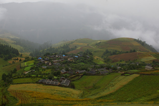 Weimuni, au Sud de Shangri-la (Zhongdian), altitude : 3200 m. 22 août 2010. Photo : J.-M. Gayman