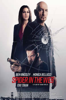 Spider in the Web Download