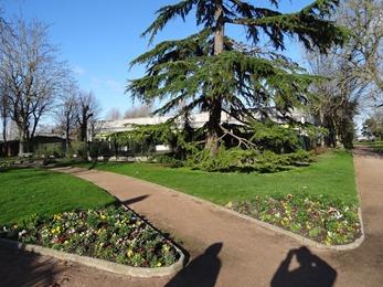 2018.02.04-015 le jardin public