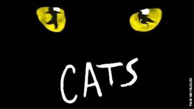 Theatre Review: Cats - Edinburgh Playhouse ✭✭✭