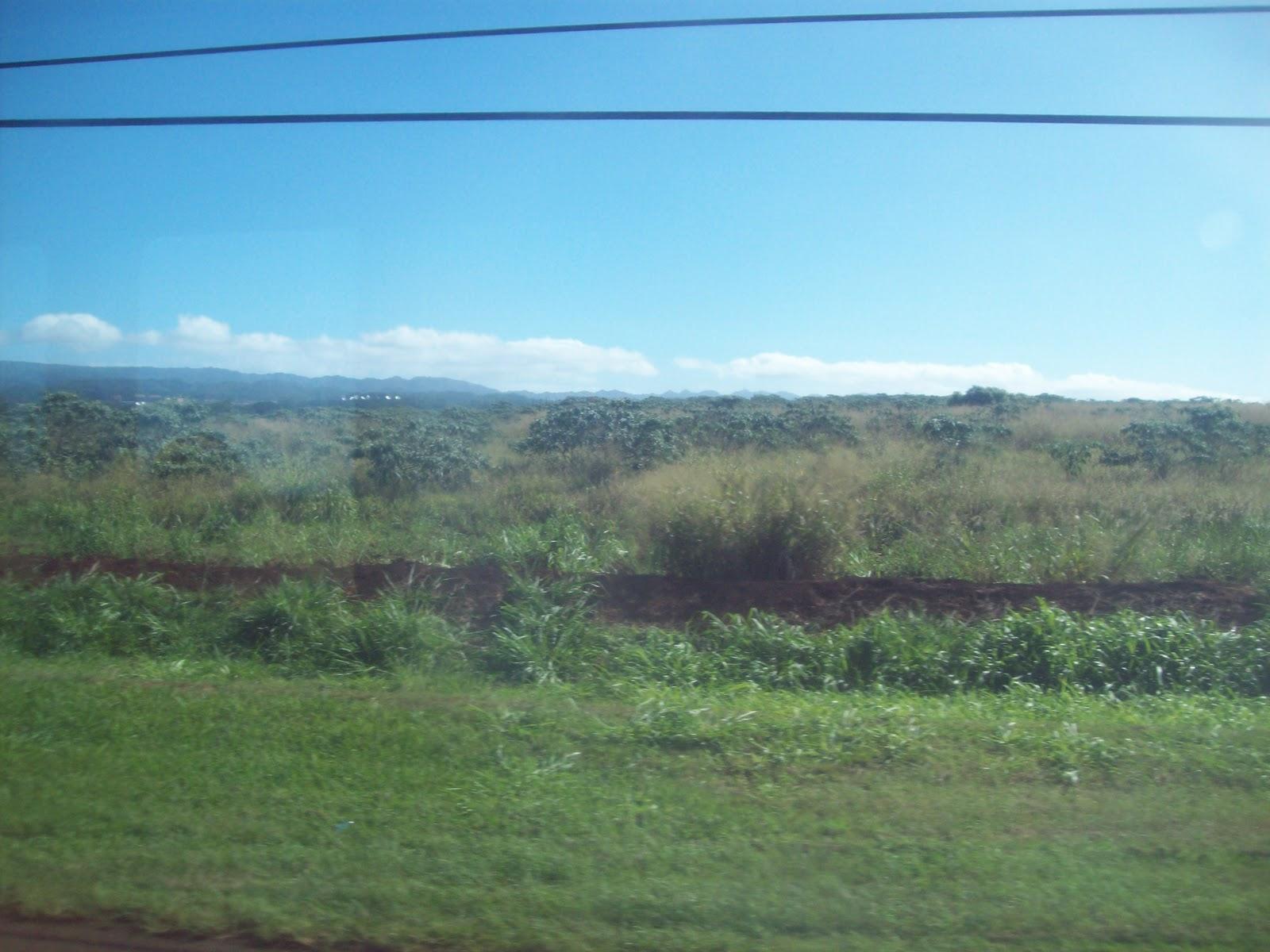 Hawaii Day 3 - 114_1092.JPG