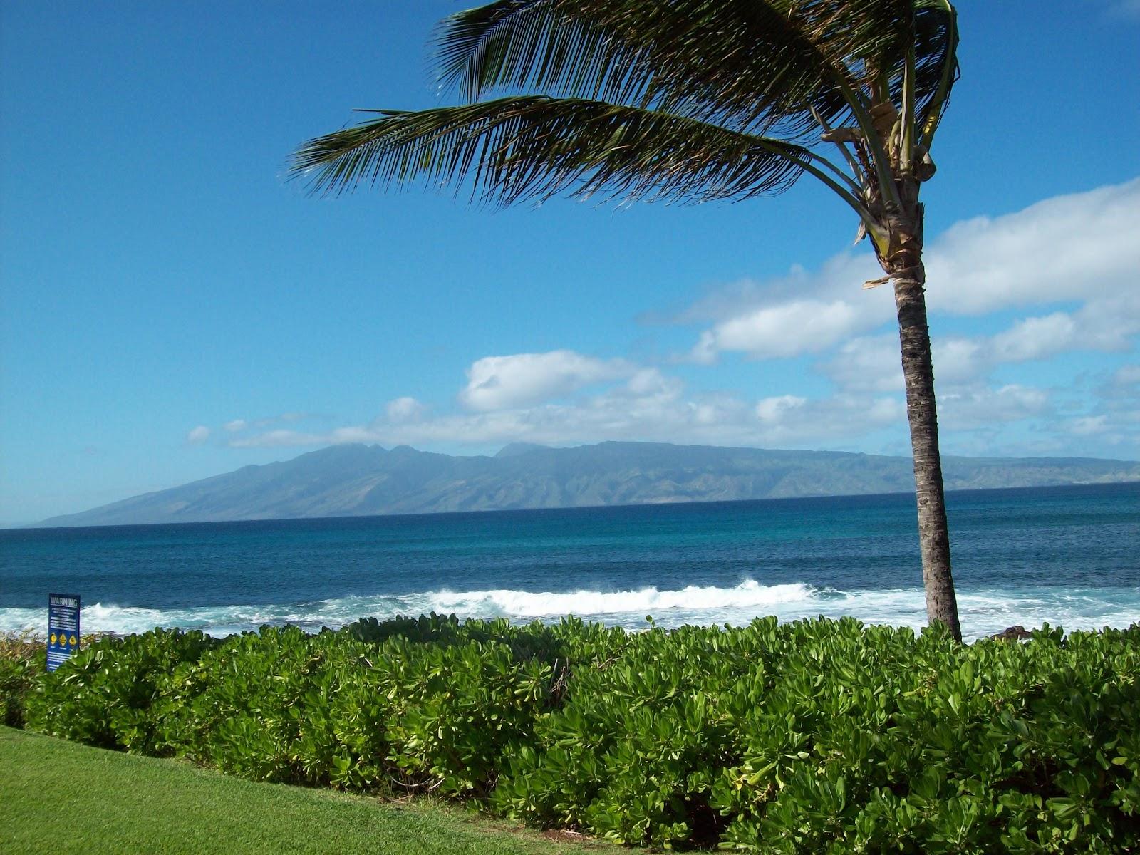 Hawaii Day 6 - 114_1795.JPG