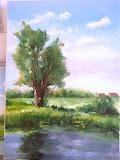 wierzba nad stawem w Jadowie, olej, płótno, 50x70cm własność prywatna