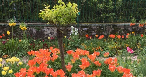 An Intro to...Paris - Pilgrimage to Giverny