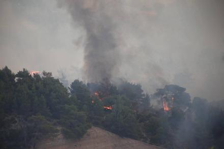 Φωτιά, Μέγαρα : Απειλούνται σπίτια στα Παπαγιαννέικα