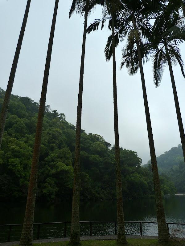 TAIWAN Taoyan county, Jiashi, Daxi, puis retour Taipei - P1260639.JPG