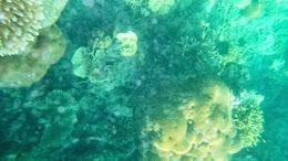 ngebolang-pulau-harapan-5-6-okt-2013-pen-05