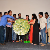 Green Card Movie Audio Launch (21).JPG