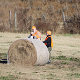Tower Hunt, November 2014 - IMG_4917.JPG