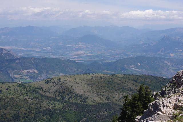 Les Alpes depuis la Montagne de Lure (1700 m), (Vaucluse), 23 juin 2015. Photo : J.-M. Gayman