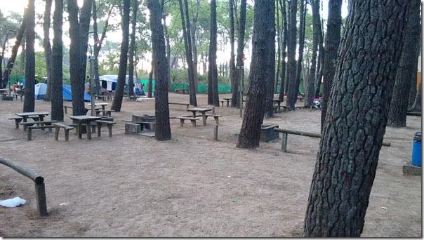 area-de-camping-com-churrasqueiras-e-mesas