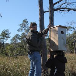 Fowl Duck Box 2013 018