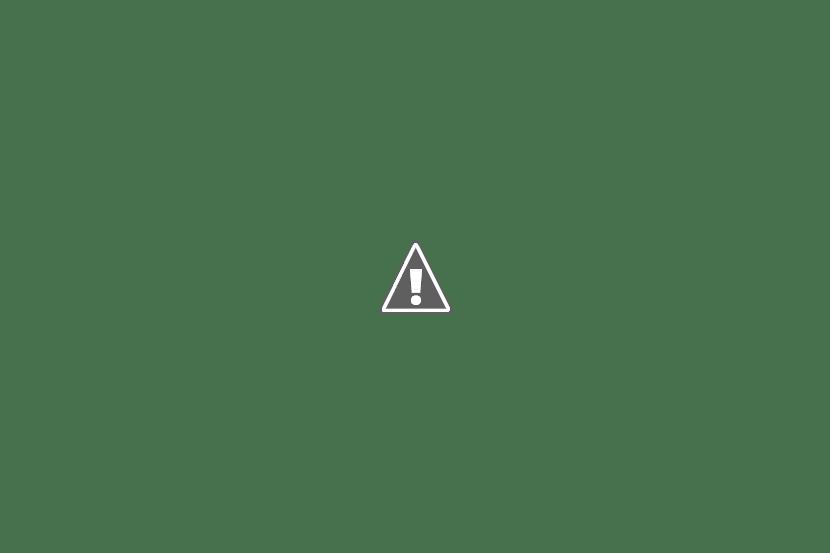 К руинам Бернардинского монастыря в Бресте приставили круглосуточную охрану