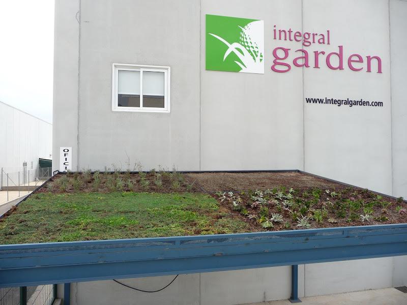 cubierta vegetal techo verde green roof villena crasas tepes seduma romáticas