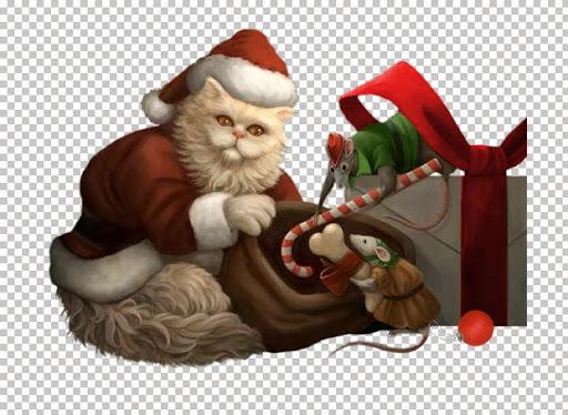 Christmas Cat~FBR 11-11-05     368 KB (2).jpg