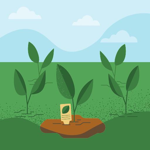 Beth Morris