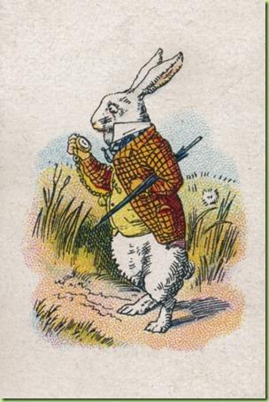 rabbit watch