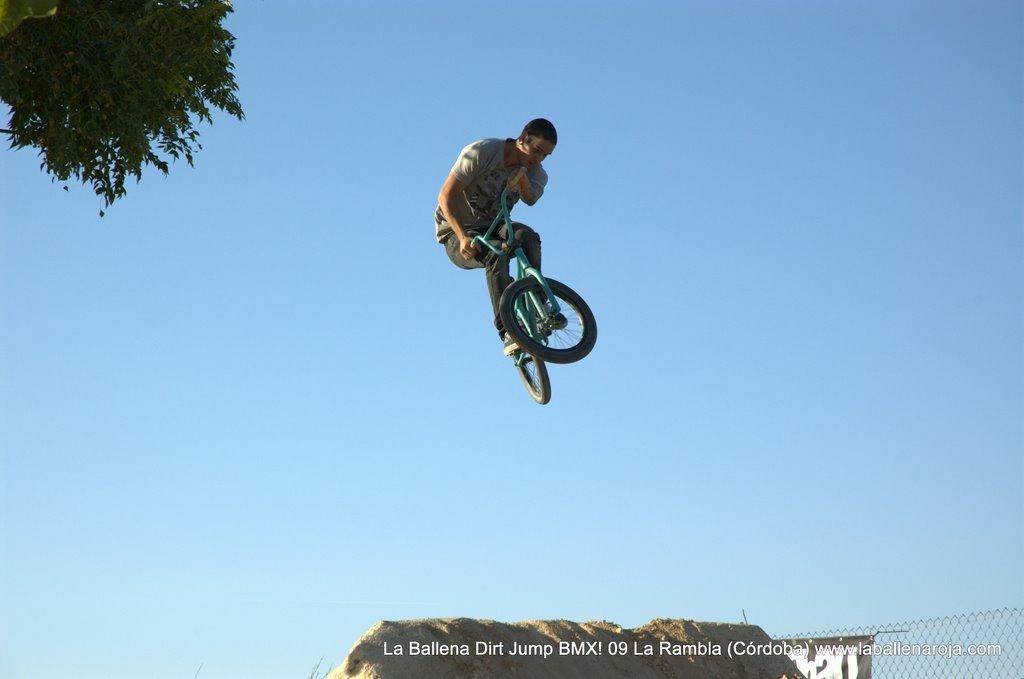 Ballena Dirt Jump BMX 2009 - BMX_09_0099.jpg