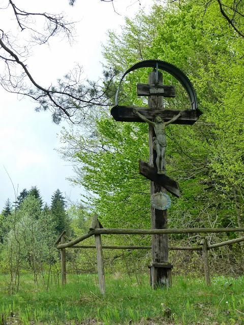 Zajęcia terenowe Źródliska Wisłoki - P1120827.JPG