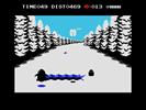 Penguin Adventure (87)