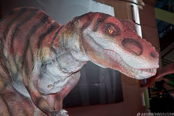 dinosaut trex