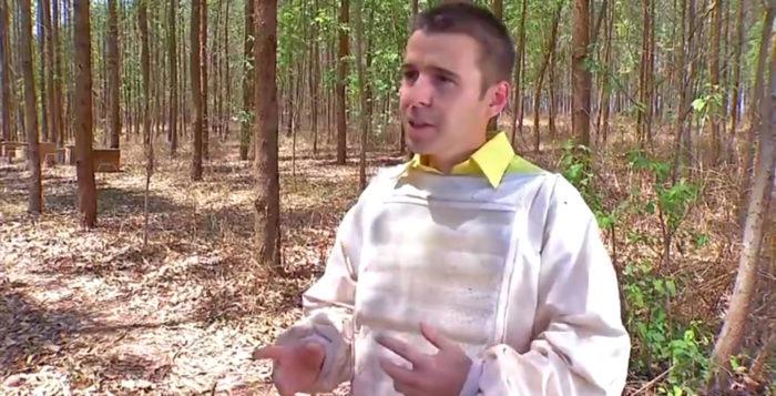 apicultura-deciolandia-700x357