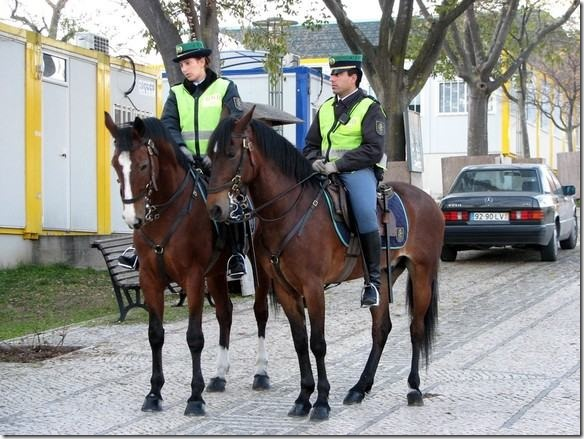 gnr-cavalos