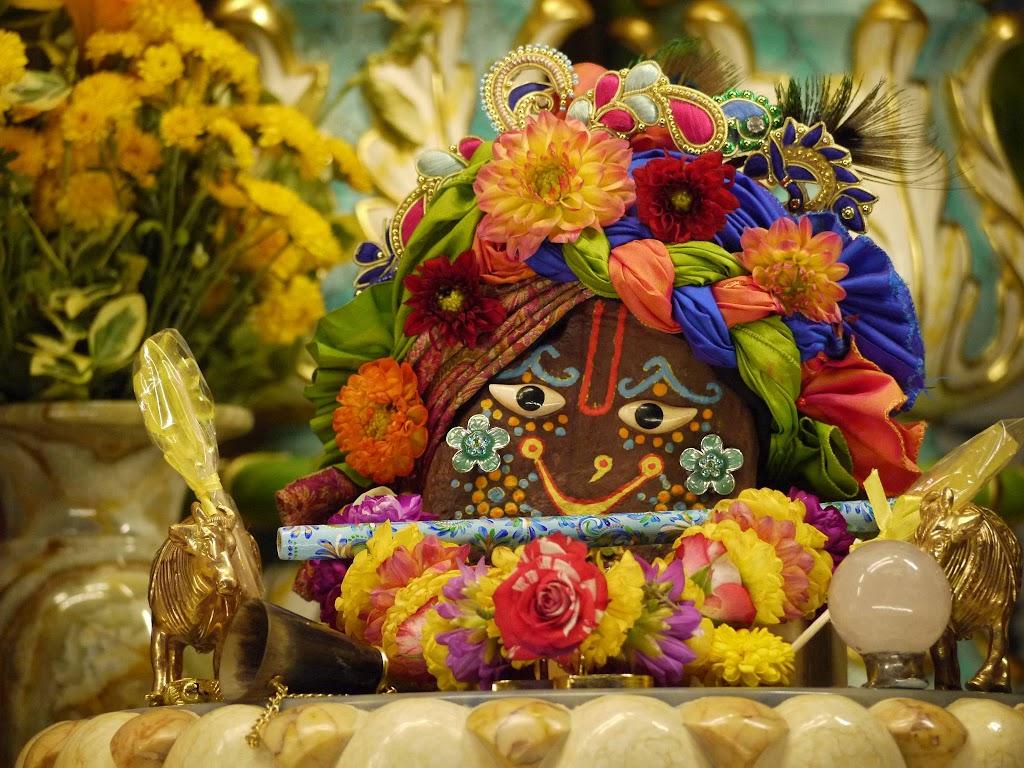 ISKCON Hungary Deity Darshan 14 Oct 2016 (2)