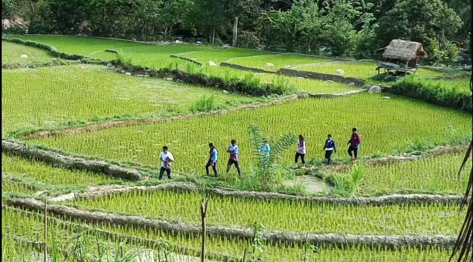 Suguhkan Air Sungai Tiga Warna, Tim Inovasi Desa Capture Objek Wisata Sepang Masanda