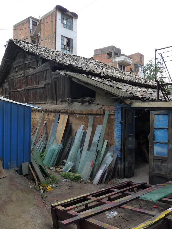 Chine.Yunnan Wen shan et BA MEI 1 - P1260820.JPG