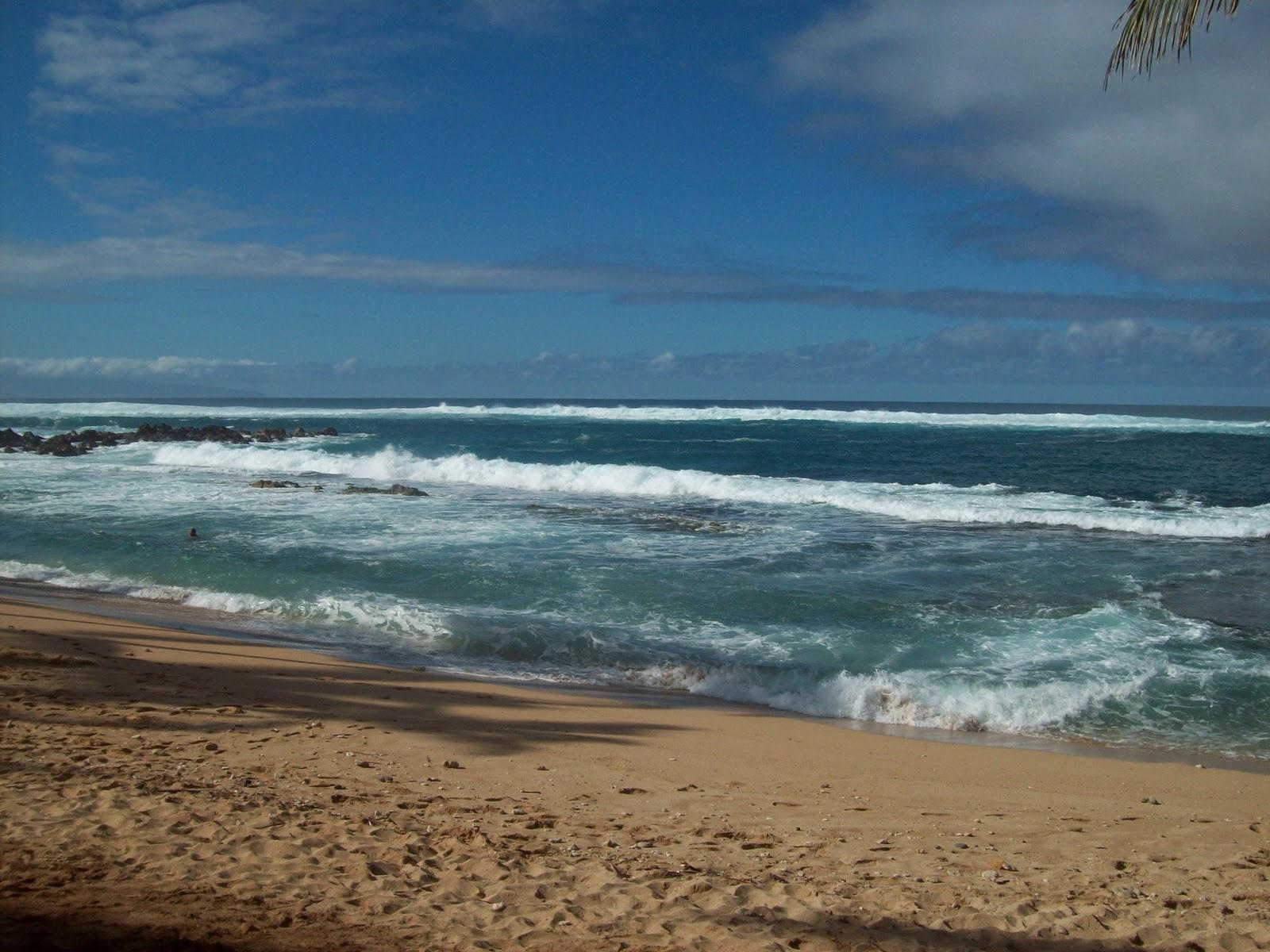 Hawaii Day 8 - 114_2220.JPG