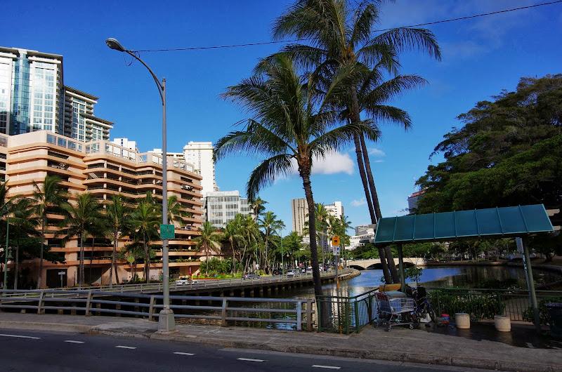 06-18-13 Waikiki, Coconut Island, Kaneohe Bay - IMGP6929.JPG