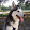 Moose's profile photo