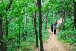 개웅산 숲길